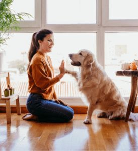 woman and dog| Tips for First-Time Home Buyers - Page 2
